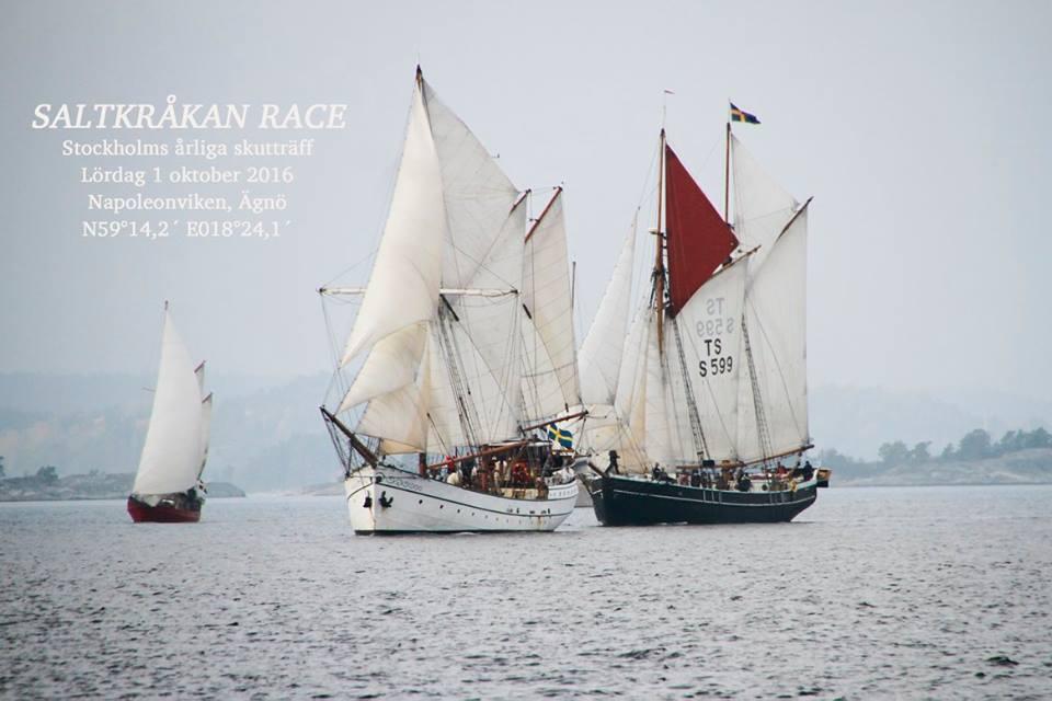Saltkråkan race 2016 |