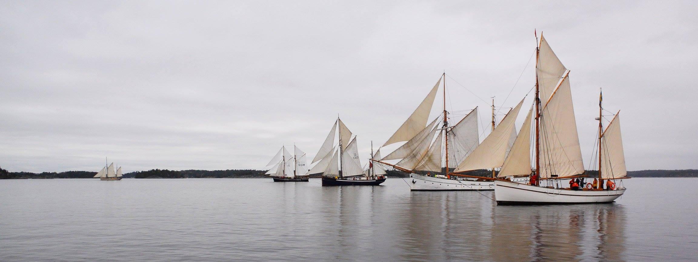 Saltkråkan Race 2018 |